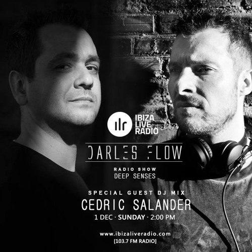 Deep Senses 01-12-2019(Hosted By Darles Flow) - Ibiza Live Radio